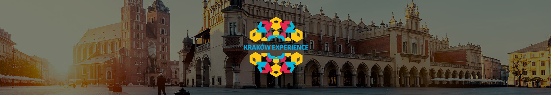 portfolio_Experience_top